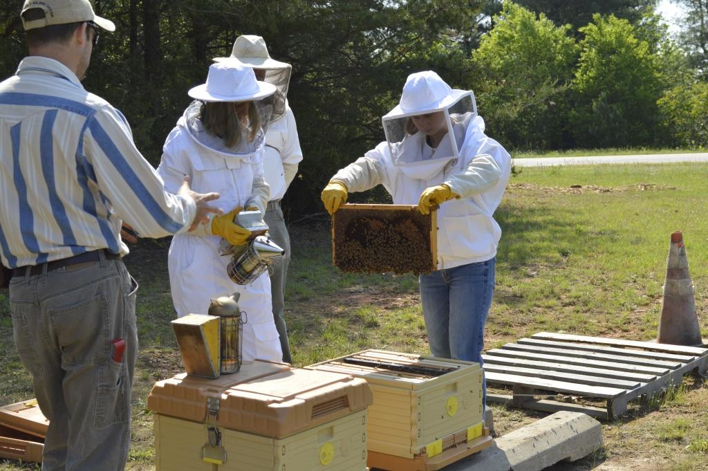 local beekeepers